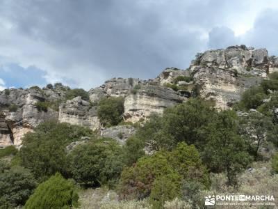 Barranco de la Hoz - Sierra de la Muela;sierra madrid viajar sola zona norte